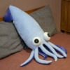 Squiddy / Blue