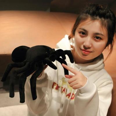 Kawaii Plushies Terry the Tarantula Cute Stuffed Animals
