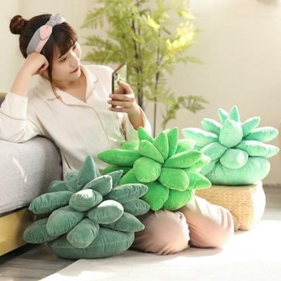 Kawaii Soft Succulent Plush